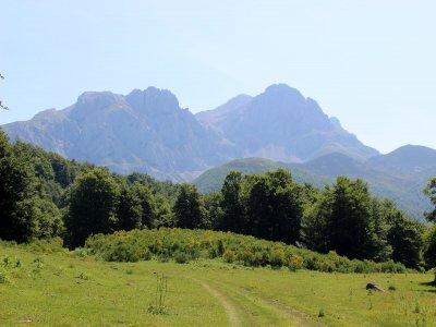 Excursión en buggy por Picos de Europa 1 hora