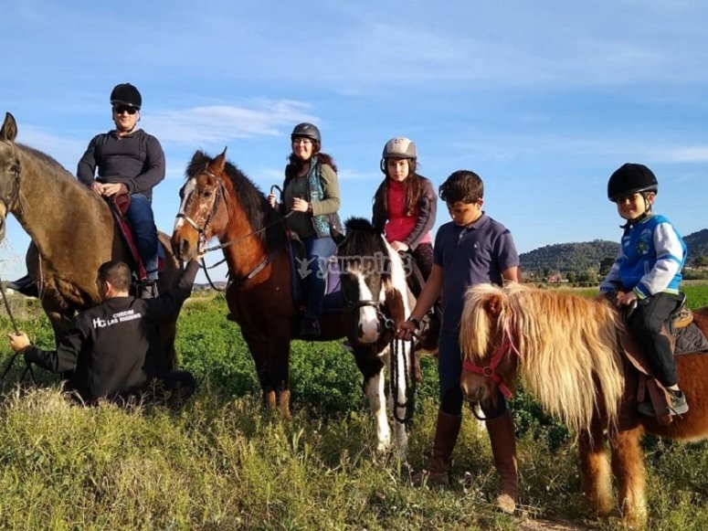 With the pony and the horses