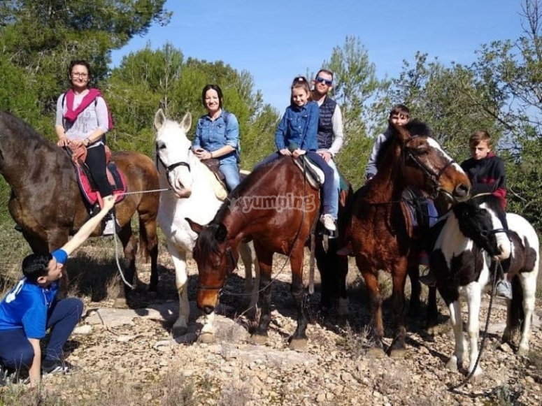 Team with horses