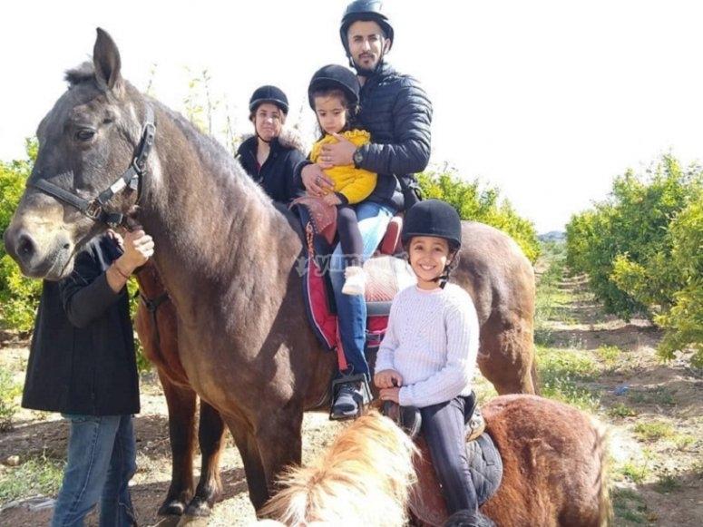 Equestrian activity