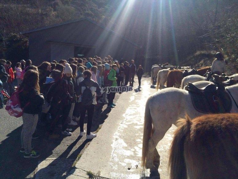 跟马一起去学校的旅游