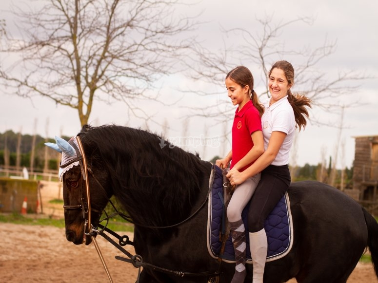 Students riding the horse together