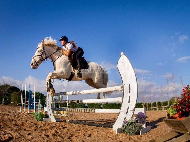 Jumping obstacles with the horse