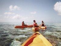Alquiler kayak en Puerto de Alcudia 1 hora