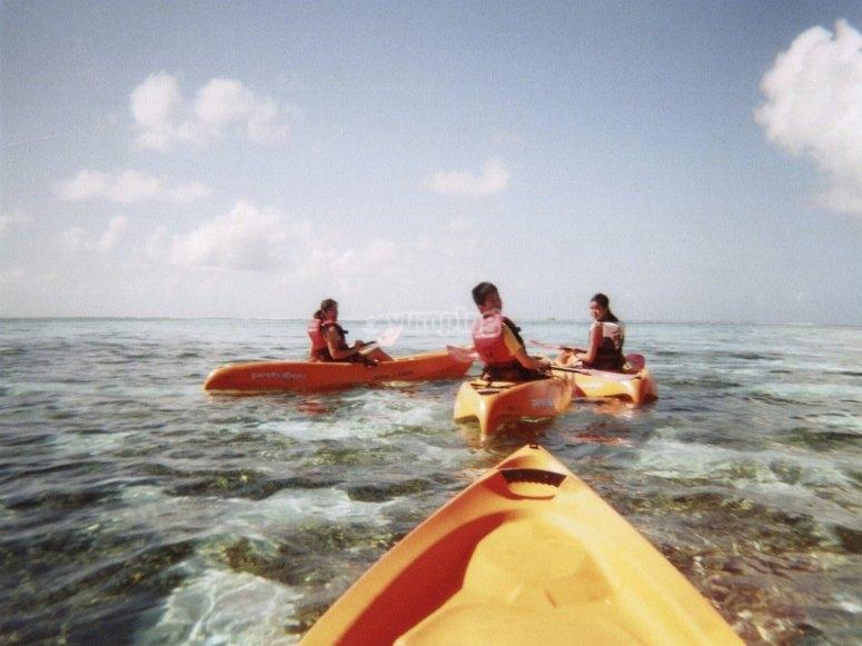 Salida en grupo con kayaks