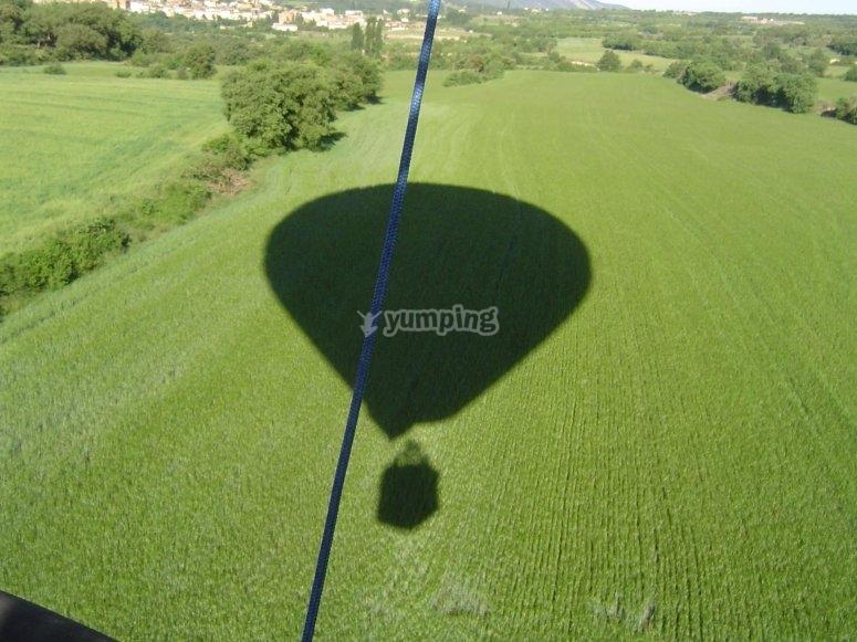 加泰罗尼亚的气球离开葡萄园