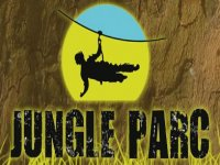 Jungle Parc Team Building