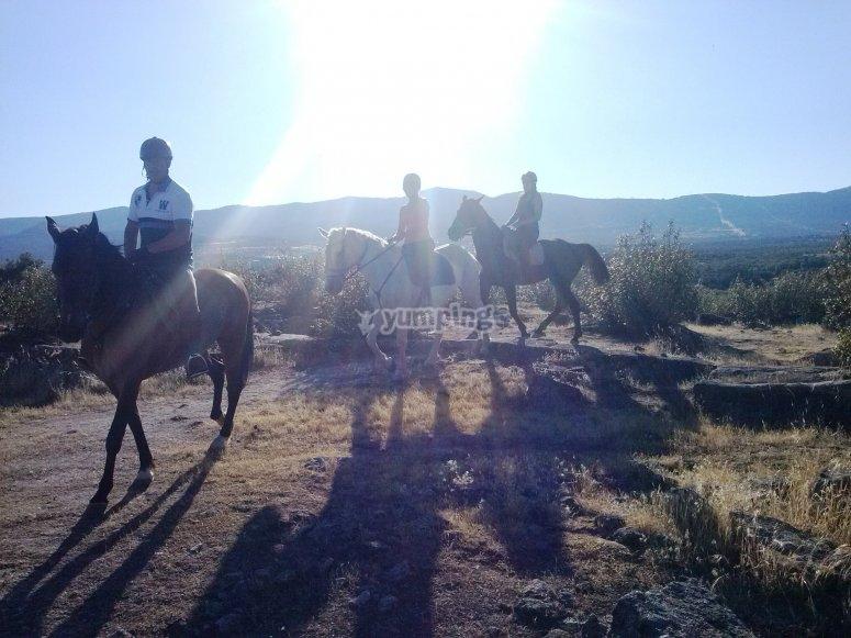 Horse journey