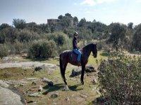 Equestrian trip