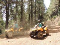 Bajando por pistas forestales en quad