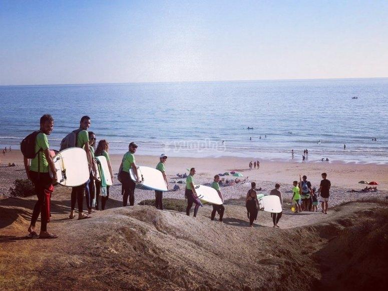 冲浪板朝海滩分组