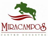 Miracampos Centro Ecuestre Clases de Equitación