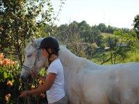 Pronto per una lezione di equitazione
