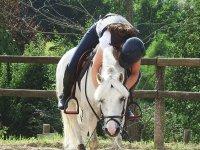 Partecipazione a una lezione di equitazione