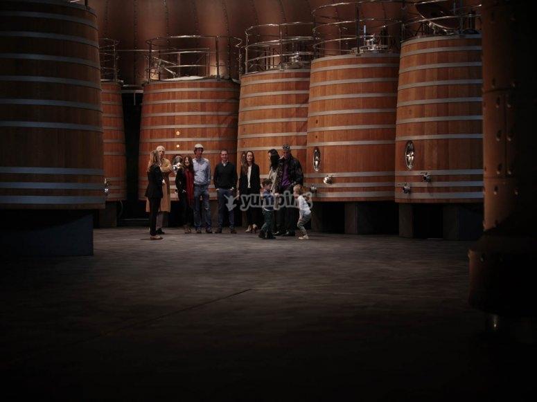 酿酒厂和葡萄园