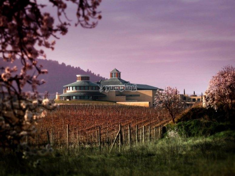 布里昂内斯酒庄和庄园