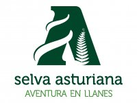 Selva asturiana Aventura en Llanes Tiro con Arco