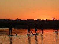 日落时享受划桨冲浪