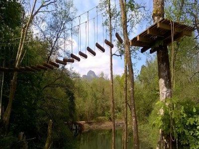 Selva asturiana Aventura en Llanes Tirolina