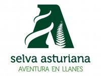 Selva asturiana Aventura en Llanes