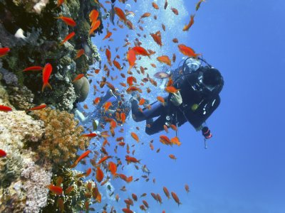 Anfibios Centro de Deportes Náuticos Buceo