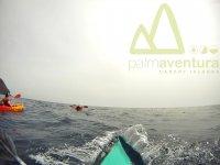 Navegando por las costas