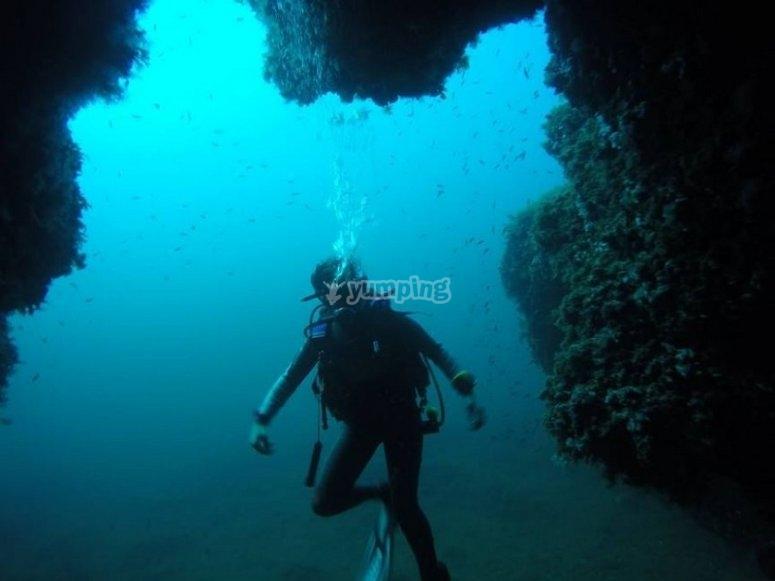 潜水发现底部