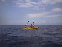 Kayak en Palma