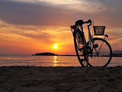 Riu a l'Ebre Alquiler de Bicicletas