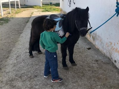 Horse riding summer camp in Getafe 1 week