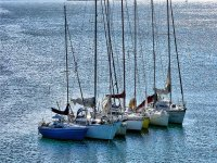 varios veleros en el mar
