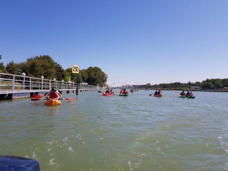 Kayaks paddling the Guadalquivir