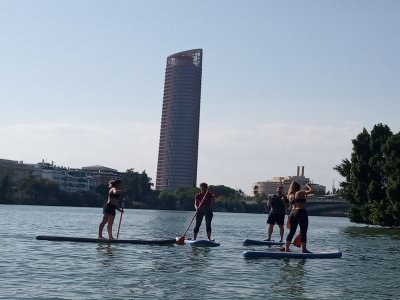 Paddle surf route on the Guadalquivir river 2 h
