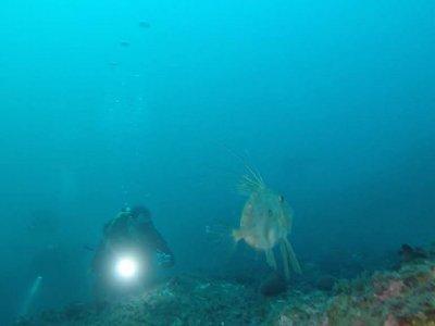 在滨海略雷特进行5点额外的装备潜水