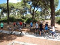 ciclistas debajo de los arboles