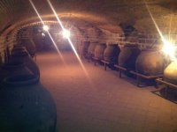 the oldest winery