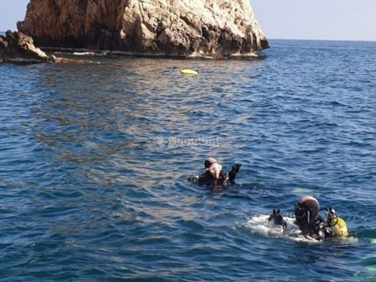 在海面潜水