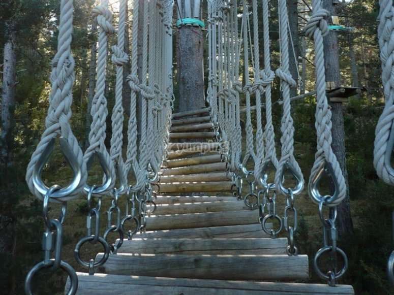 Puente de troncos en Saldes
