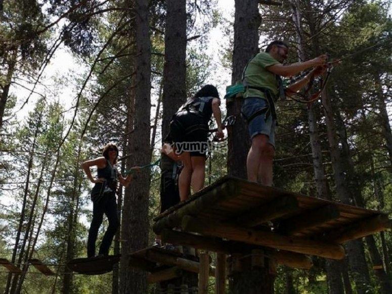 La squadra tra gli alberi