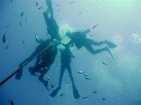 全年潜水课程