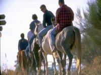 马背上的路线