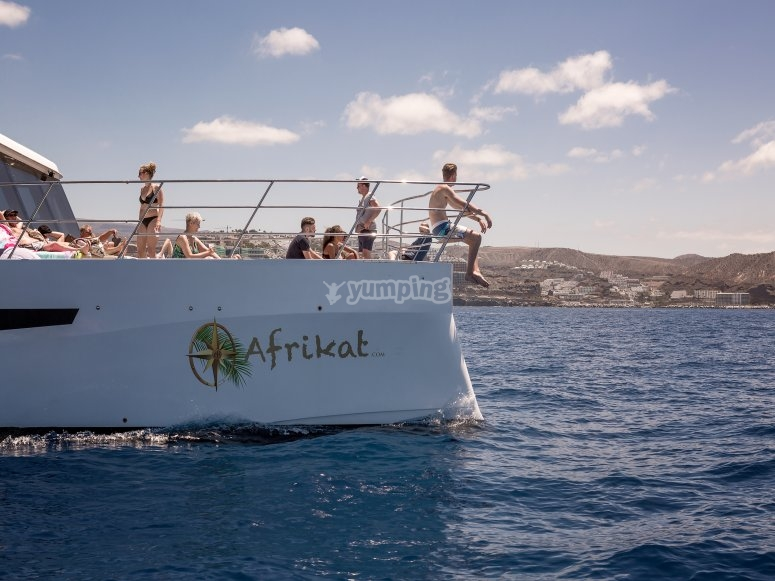大加那利岛的游艇上