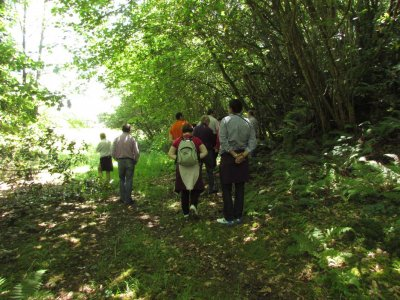 Selva asturiana Aventura en Llanes Senderismo