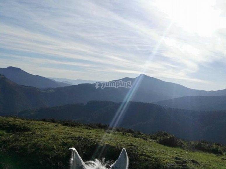 Vistas desde el caballo