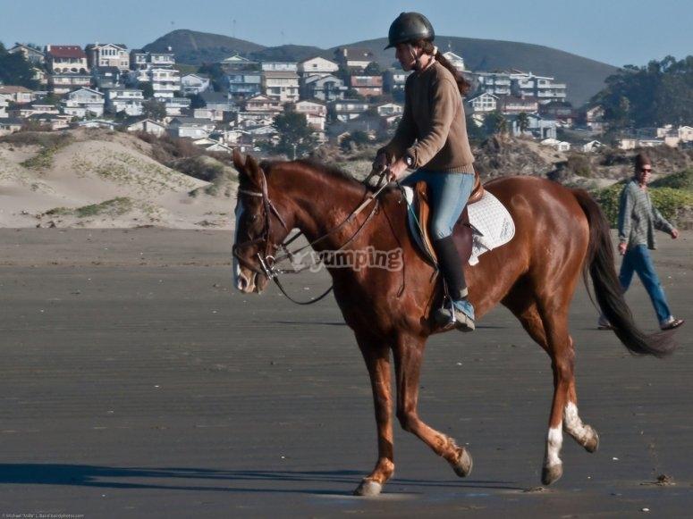 Excursión a caballo en Vizcaya