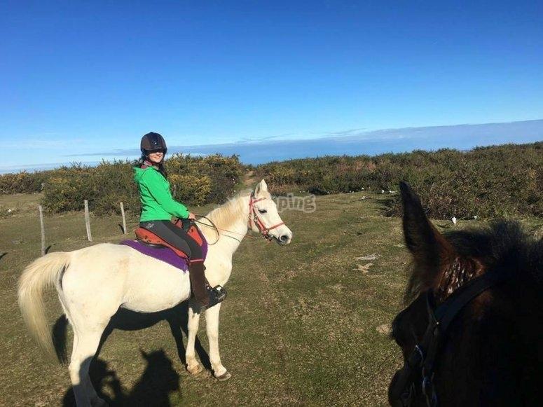 A fantastic horse ride tour