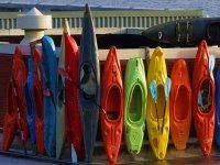 Variety of Kayaks