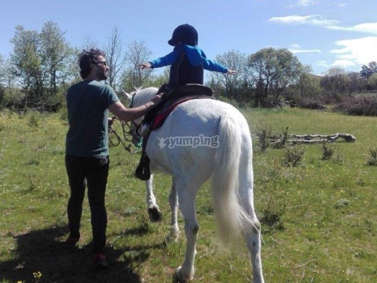 Primeros pasos con el caballo