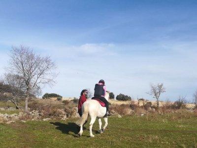 Clases de equitación en Santo Domingo de Pirón 2h