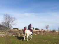 在圣多明哥德皮隆2h的骑马课程